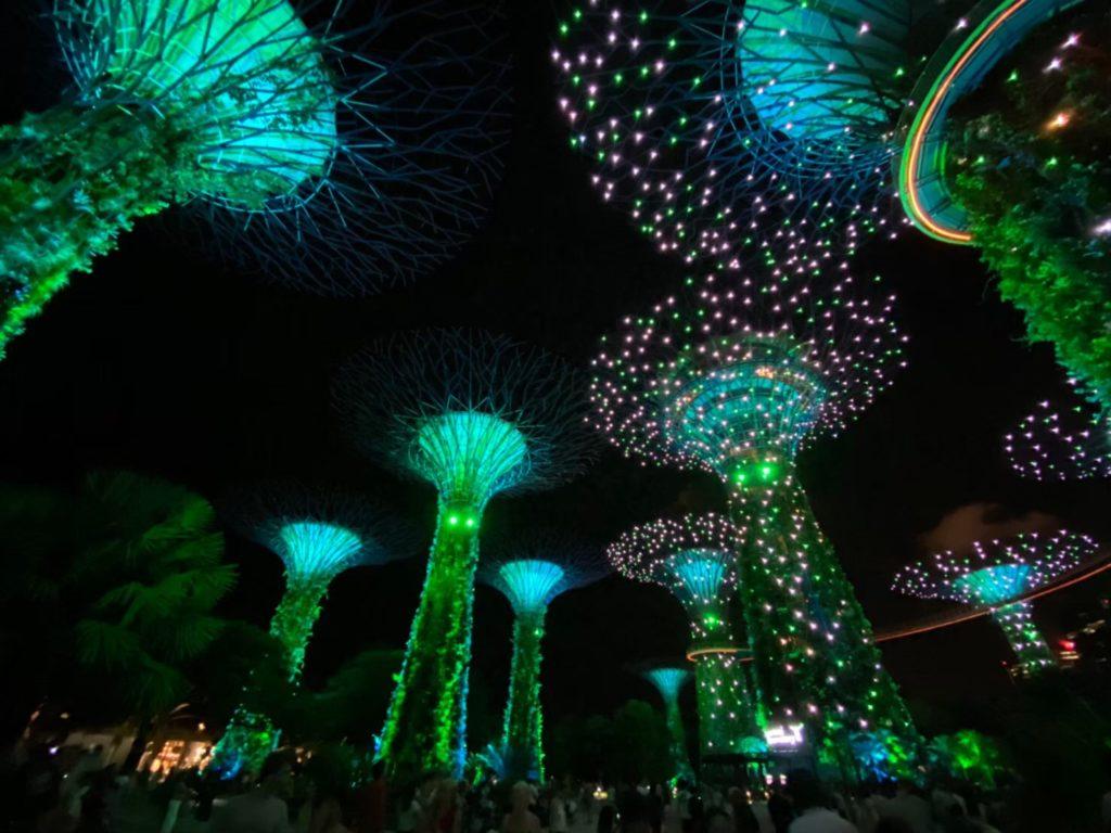 シンガポールのおすすめ観光スポット③:ガーデンズ・バイ・ザ・ベイ