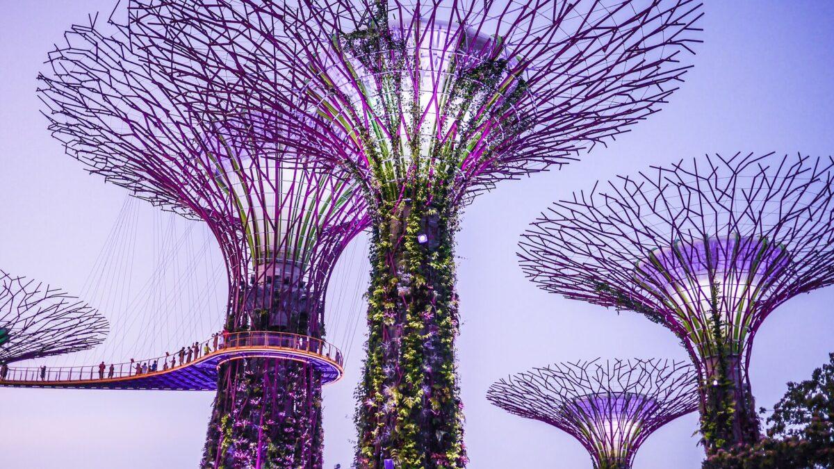 シンガポールの有名料理おすすめ4選のまとめ