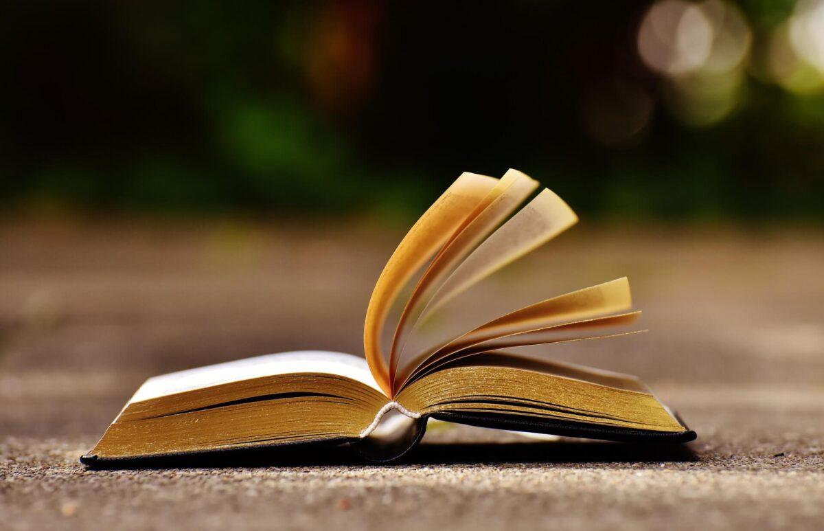 同ジャンルの本を、連続して7~10冊読書するべきと述べる根拠②:死ぬほど読めて忘れない高速読書