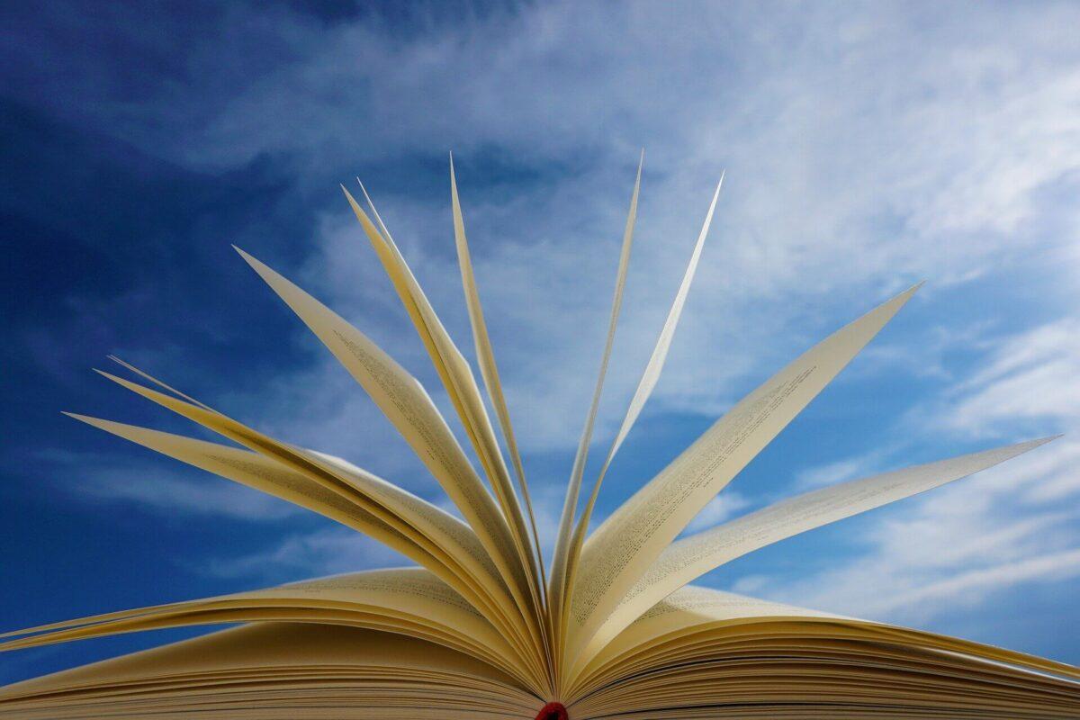 【読書術】本の内容を忘れないためには、「複数回読み」です【読書1回の時間を短縮しよう】