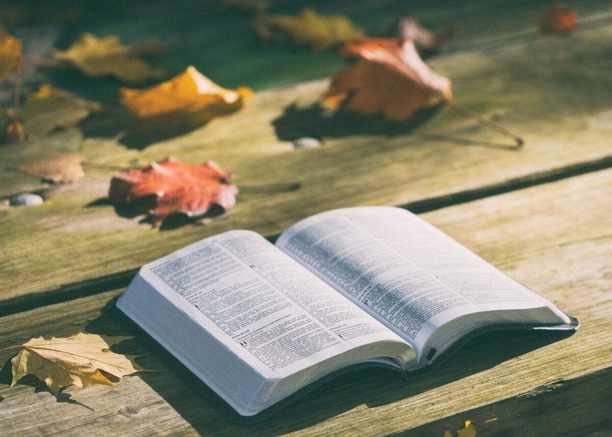【読書術】「アウトプット」は本の内容を定着させるために最重要のまとめ