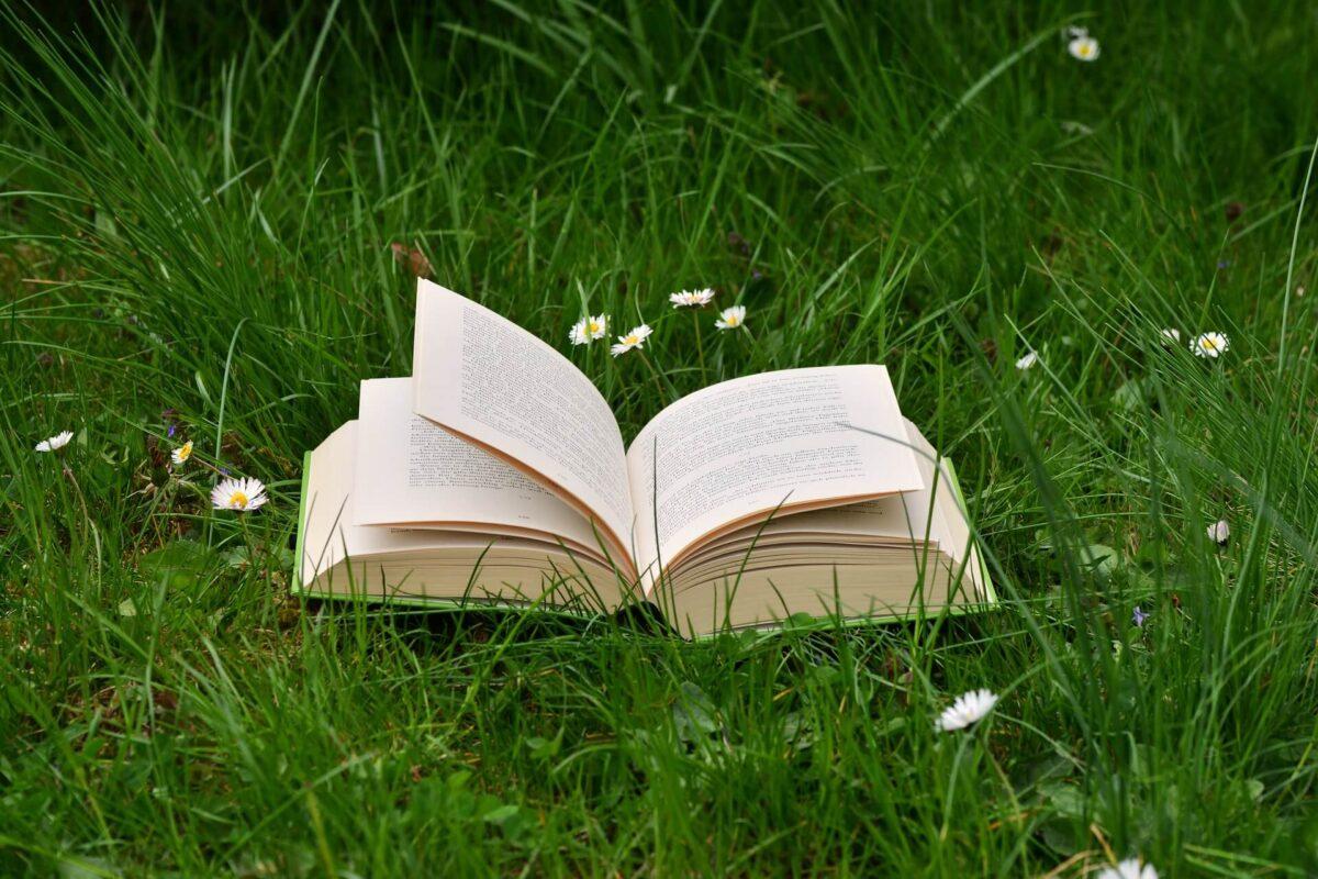 読書の魅力とは、人生が豊かになることのまとめ