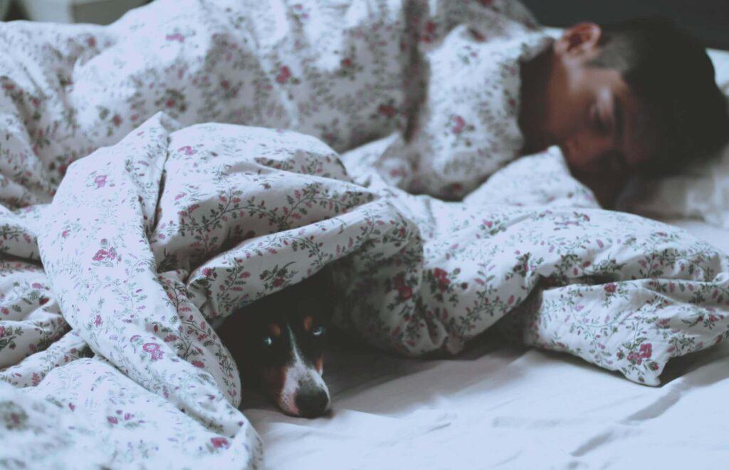「「スタンフォード式 最高の睡眠」がおすすめする習慣を要約」のまとめ