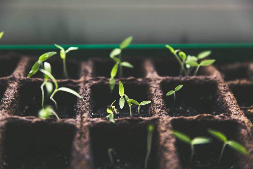 「億を稼ぐ積み上げ力」における成長法則